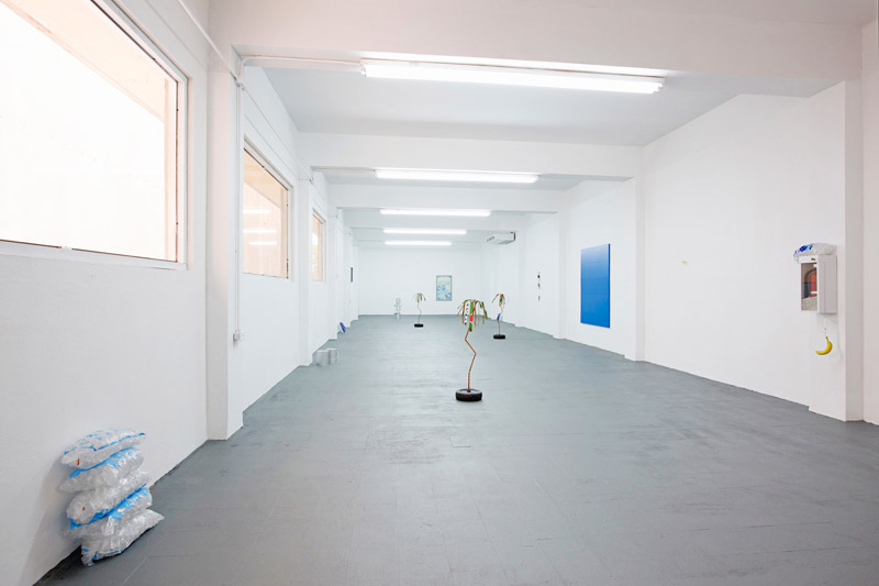 Installation view, Freezer Fever at Roberto Paradise, Chris Bradley