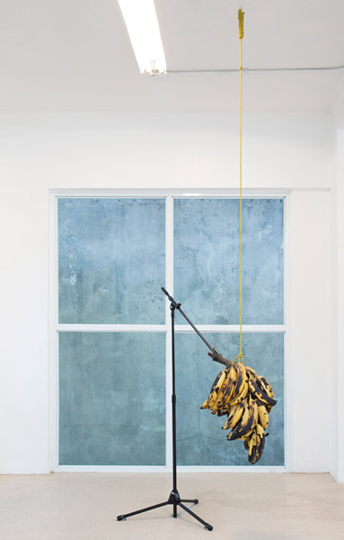Cacofonía (Racimo Discursivo), 2014 | Plantains and Microphone Stand, Variable